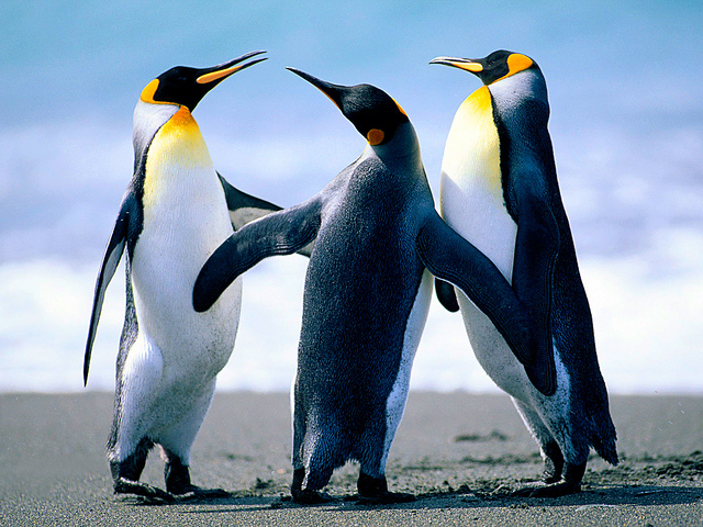 Linux Integration Services 4.1 for Hyper-V