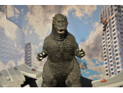 Godzilla Disaster